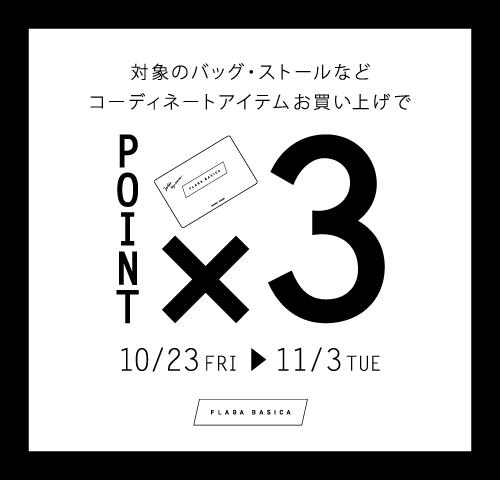 F雑貨POINT×3_HP